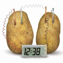 Potato Clock Novel Green Science Project Experiment Kit Kids Lab Home School Toy