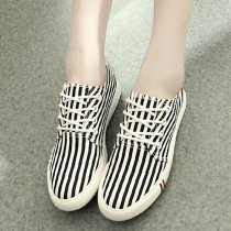 Casual Strip Contrast Color Lace-up Canvas Sneaker Slip On Loafers