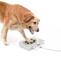 Automatische Drinkfontein met Poot-Pad voor Honden